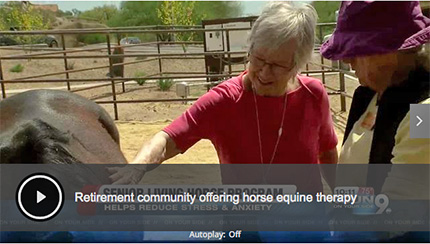 Equine-Therapy-at-Tucson-Retirement-Community