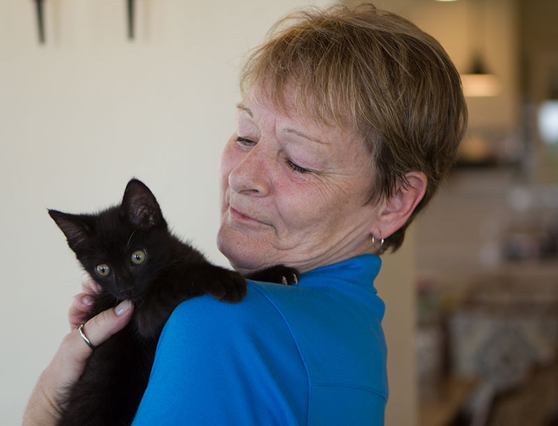 Tucson-memory-Care-Kittens-Program