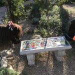 Miniature Horses Admiring our new Santa Theresa Bench designed and created with the help of the Imago Dei Students and our Residents!