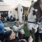 Celebrating Rodeo Week and our western heritage at our February all campus event!  Special visitors included Jumpin' Jack the Clydesdale and his sidekick Snickers (a miniature horse) at our Springs courtyard and Acacia Café.