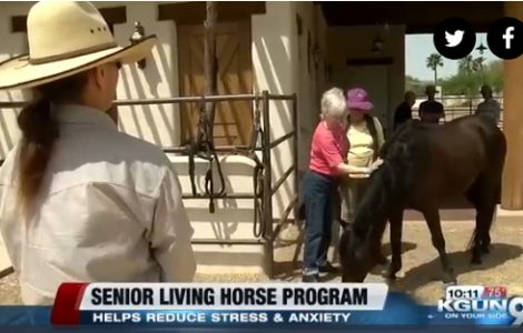 Retirement Community Offering Horse Equine Therapy