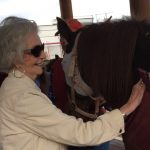 Come check out our In the Presence of Horses program that is held every Tuesday in our Stable.