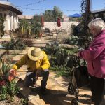 Our residents love walking through The Hacienda's Therapy Garden, especially on a beautiful day!